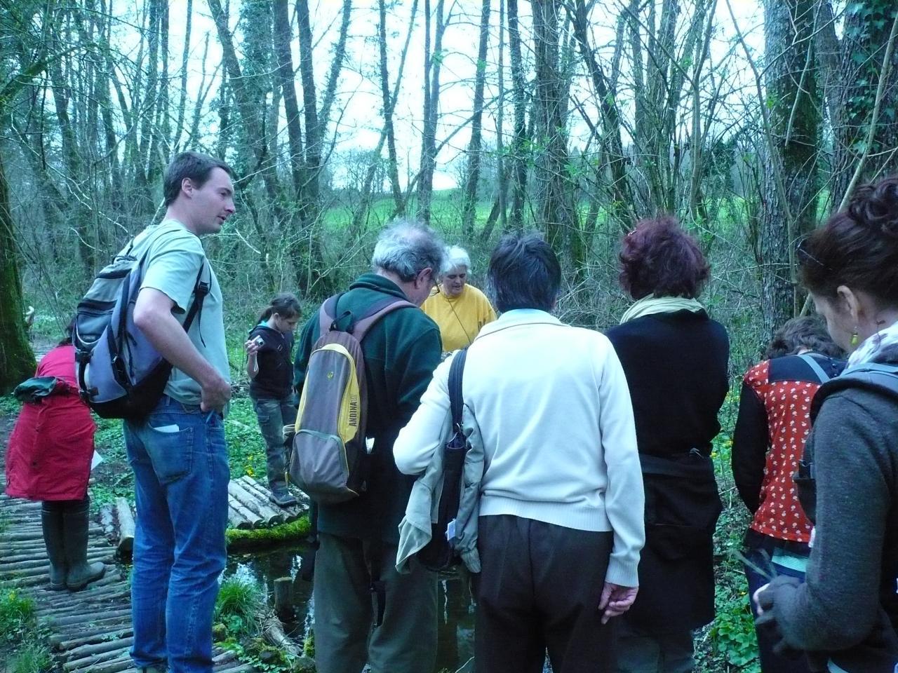 8-l'après-midi dans le bois des Vaseix